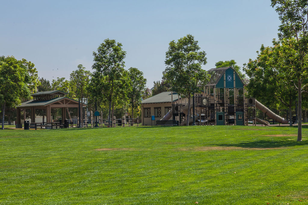 Forest Park at The Preserve at Chino