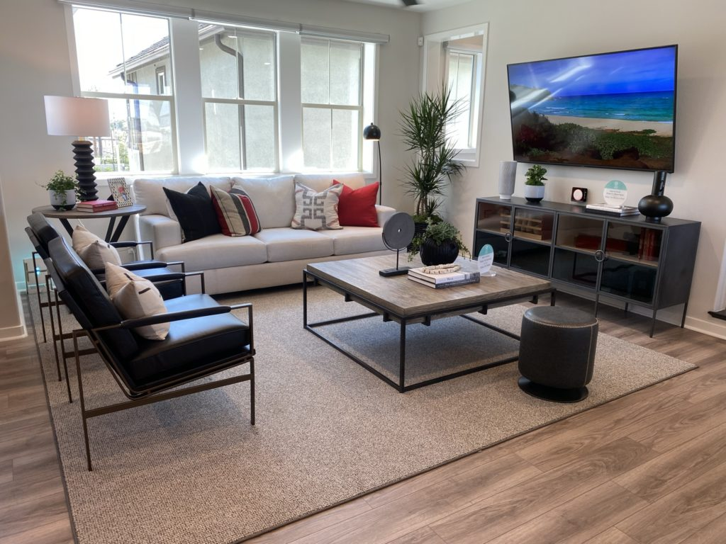 Delia living room with flat screen television