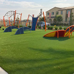 playground with green grass